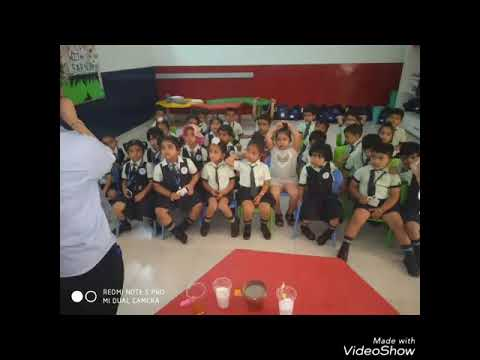 Mount Literans learnt about the concept of Soluble and Non- soluble