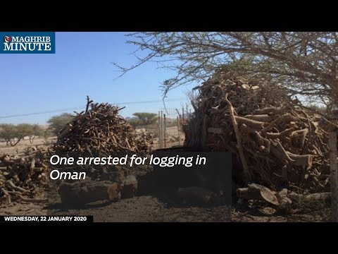 One arrested for logging in Oman