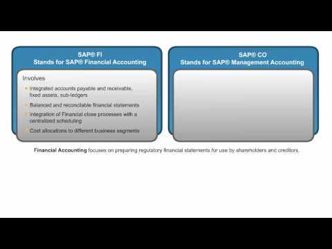 SAP Financial Accounting FI Training Online - YouTube