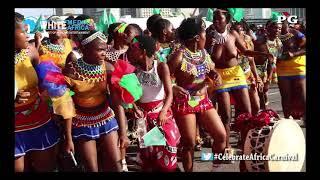 Babo Ngcobo Live