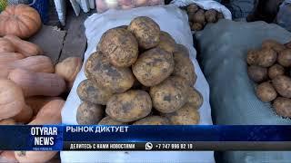 На рынках Шымкента подорожал картофель