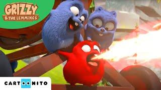 Grizzy I Lemingi | Krem Czekoladowy | Boomerang