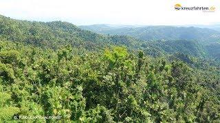 Ausflug El Yunque National Forest, Puerto Rico