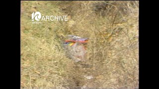 WAVY Archive: 1981 Norfolk Bodies Found-Woman and Child