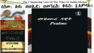 Psalms Of David In Amharic And English