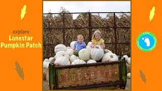 A Guide to the Lonestar Pumpkin Patch