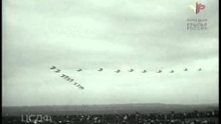 Крылья Родины (1955) фильм смотреть онлайн