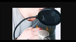 I will record a british male professional voice over today