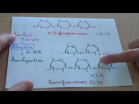 El estrógeno y el aumento del pecho