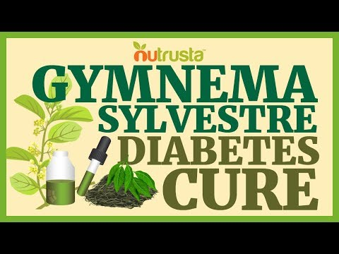 Cure for Diabetes? Gymnema Sylvestre Banishes Blood Sugar Worries
