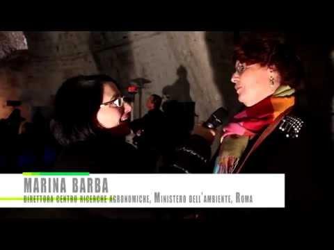 XYLELLA REPORT di Maria Luisa Mastrogiovanni salviamo gli ulivi del Salento