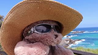 Ted The Bogan goes to Seal Rocks