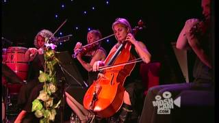 Angus & Julia Stone - Hollywood (Live in Sydney) | Moshcam