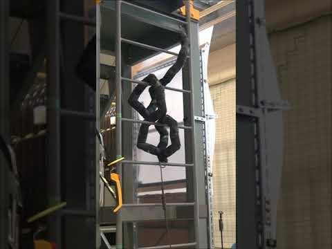 Ladder climbing snake robot