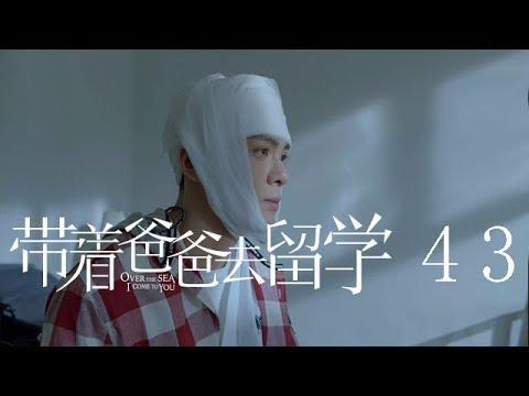 帶著爸爸去留學 43 | Over the Sea I Come to You 43(孫紅雷、辛芷蕾、曾舜晞等主演)