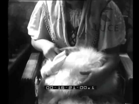 Video di sesso amatoriale privato