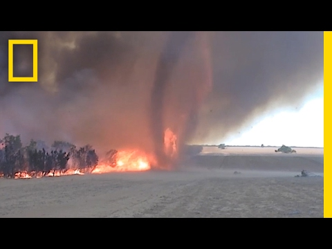 WATCH: Fire Tornado Captured In Rare Video | National Geographic