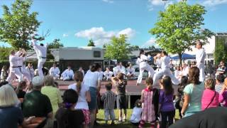 preview picture of video 'Taekwon-Do Vorführung Sommerfest 2012'