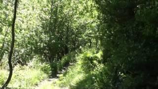 preview picture of video 'VACANCES 2012 - 08/07 - Géocaching - Llorts - Mina de ferro de Sedornet'