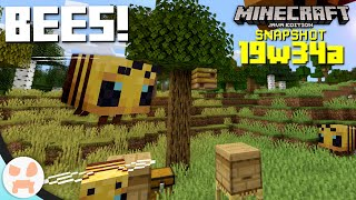BEES!   19w34a Snapshot Features & Changes - Minecraft 1.15