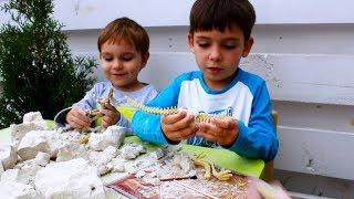 Мы нашли кости динозавров! Обзор игрушек Danko Toys Набор раскопки динозавра Dino Paleontology kids