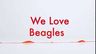 Maryland Loves Beagles