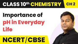 Importance of pH in Everyday Life - Acid, Bases and Salts | Class 10 Chemistry