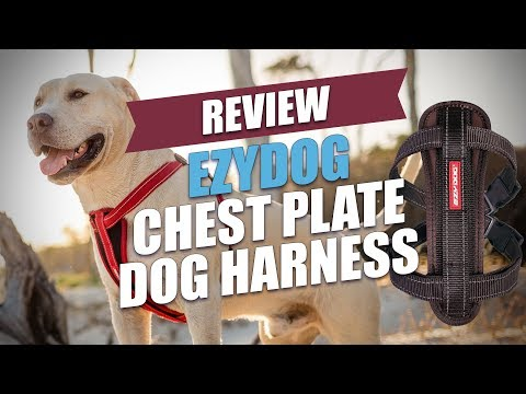 EzyDog Chest Plate Dog Harness Review (2018)