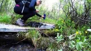 En vandring till Skierfe klippan