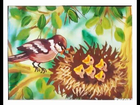 Как нарисовать птицу. Поэтапное рисование гуашью. Подробный обучающий видео урок.