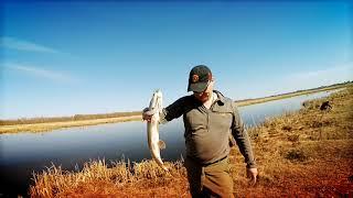 Омск рыбалка в черте города