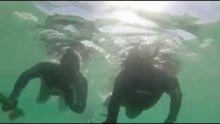 preview picture of video 'Umm Al-Quwain spearfishing trip UAE'