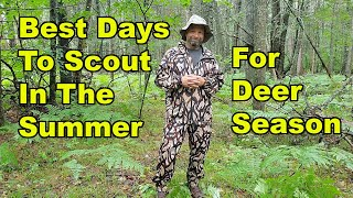 Best days To Summer Scout For Deer Season
