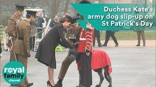 Duchess Kates Army Dog Slip-up On St Patricks Day