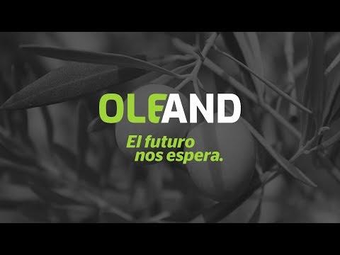 Nace en La Puebla (Sevilla) la mayor cooperativa del olivar