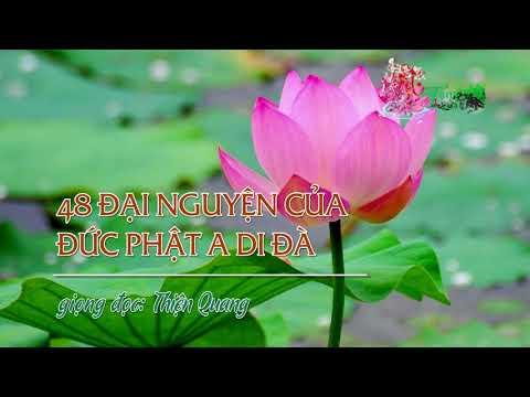 48 Đại Nguyện Của Đức Phật A Di Đà -  Thiện Quang đọc
