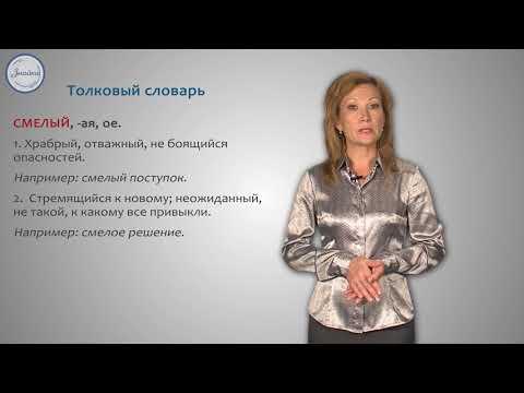 Основные словари русского языка