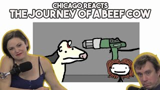 Chicagoans React to The Journey of a Beef Cow by Sam O'Nella