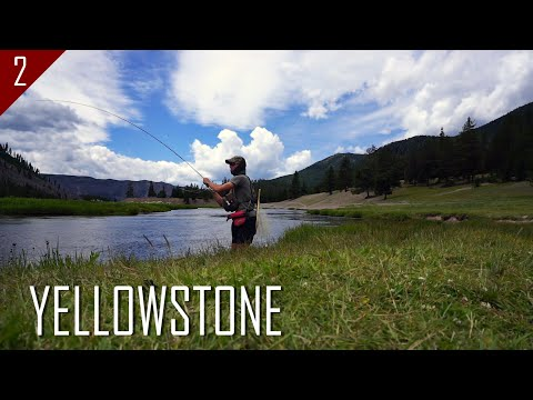 Fly fishing Yellowstone and the surrounding area