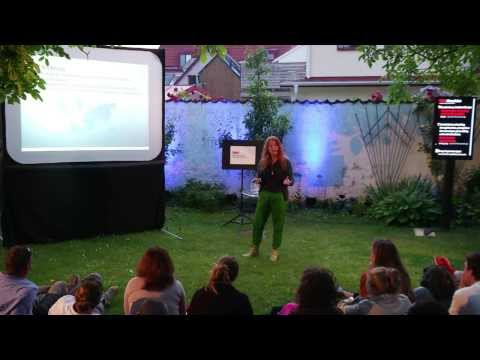 Why Space? Because Earth depends on it: Cecilia Hertz at TEDxAlmedalen 2013