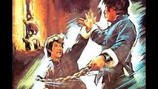 Мастер Южного Шаолиня  (кунг-фу, 1982 год)