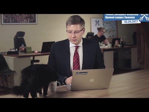 Intervistano sindaco di Riga (Lettonia), gatto si avvicina e beve dalla tazza