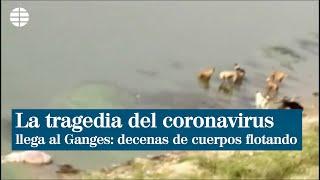 La tragedia del coronavirus llega al Ganges