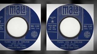 "THE BOX TOPS- ""TURN ON A DREAM"" (LYRICS)"