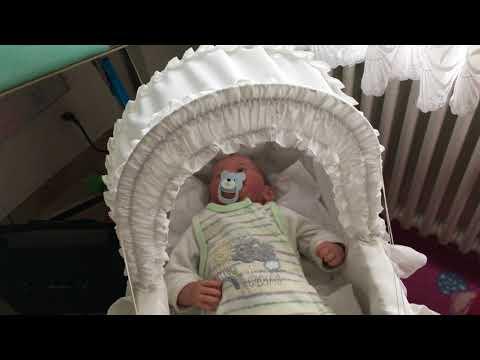 Baby stubenwagen test anleitung und vergleich 2018
