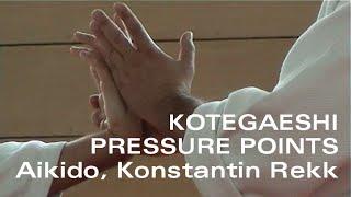 Kotegaeshi Pressure Points - Aikido and Kyusho Jitsu - Chudan Tsuki Kotegaeshi Basics - part 3