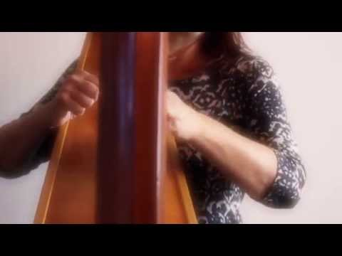The Gloucestershire Harpist Video