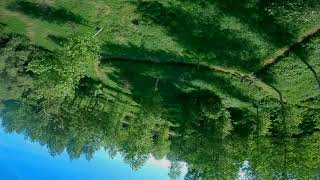 Fpv freestyle dance with te trees