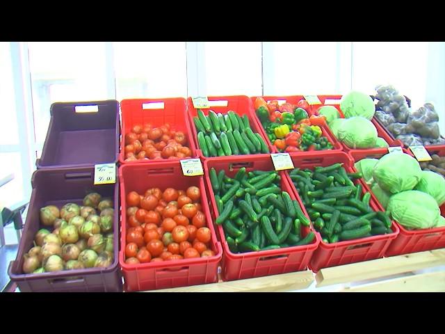 Ангарчанам обеспечены свежие и недорогие овощи