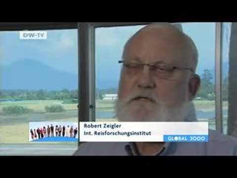 Partnervermittlung schweiz